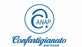 L'Assemblea Programmatica Anap