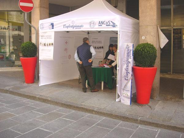 2008 - Giornata Alzheimer - Vercelli